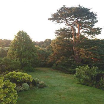 sunrise over garden