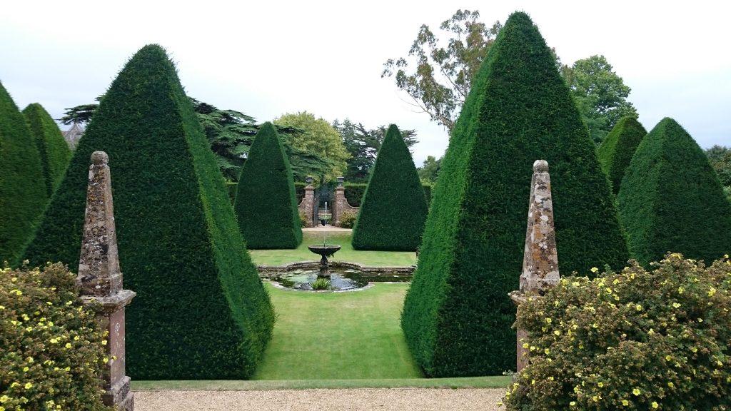 Renovating Yew Hedges Edwards Gardens